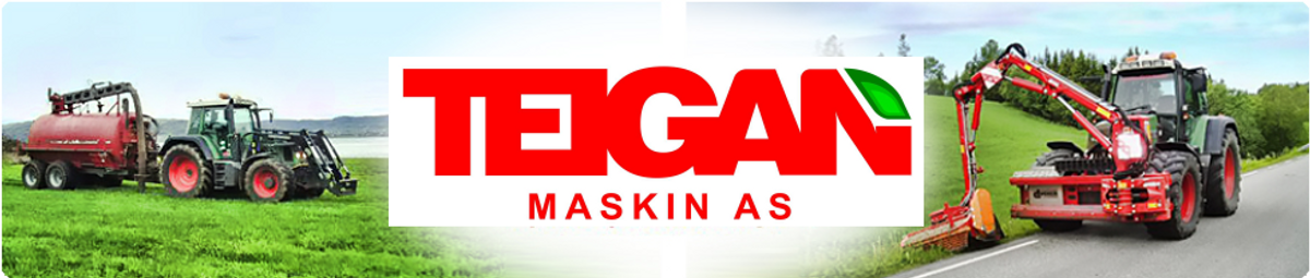 Logo, Teigan Maskin AS